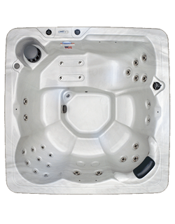 MS29 Spa Hot Tub